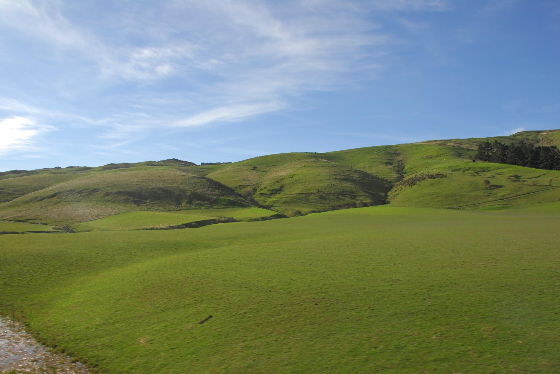 collinschristchurchrollinghills